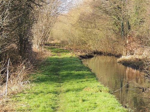 Hatherton Canal H350-036