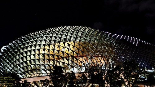 The Durian On The Roof..