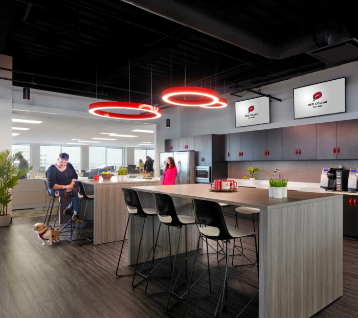 Red Collar Pet Foods Offices – Franklin